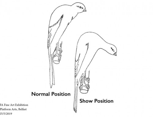 Normal Position – Show Position, Platform Arts
